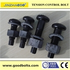 S10T JSS II09 Tor-shear Type Bolt